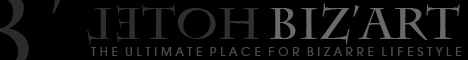 www.hotel-bizart.ch